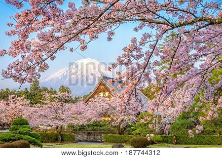 Shizuoka, Japan with Mt. Fuji in spring.