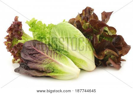 fresh romaine and red lettuce on a white background