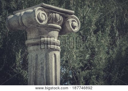 A fragment of an antique column is shot against a background of a green bush on a sunny day