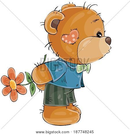 Vector illustration of a loving brown teddy bear boy hides behind a flower and is going to kiss someone. Print, template, design element