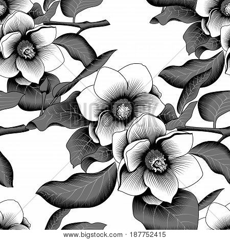 Seamless magnolia tropical flower blossom in leaves on a white background. Vector.