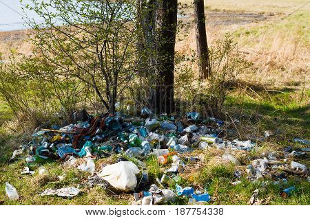 A pile of garbage in the forest on the shore of the bay