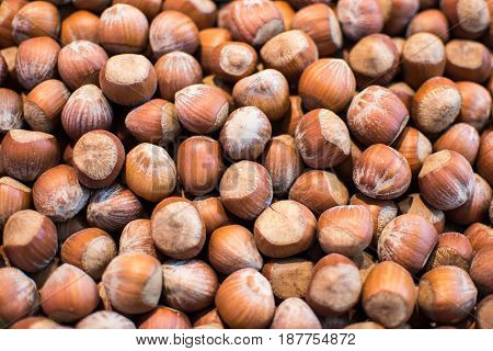 Organic Hazelnut Background. Stack of Raw Hazelnuts Close Up.