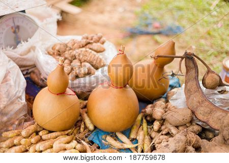 Water Containers Made Of Gourd