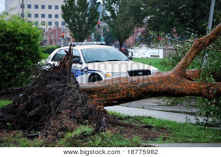 NEW ORLEANS - SEPT 2: A New Orleans police department patrol car lies behind a fallen tree in the aftermath of Hurricane Gustav on September 2, 2008 in downtown New Orleans.