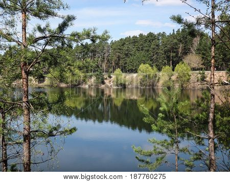 Reflection of trees in the river. Landscape.