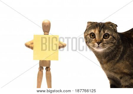 Wooden doll with blank note paper and curious cat in frame.