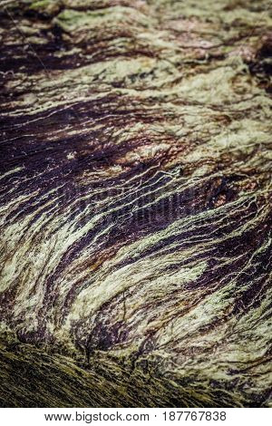 Closeup of a natural black and white velvet texture of sea grass.