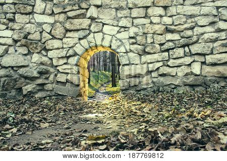 Entrance to fairyland. Gates of the magical forest. Path to dreamland. Mysterious passage to another world. Parallel dimension. Way of the future. Travel to fantasy.