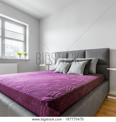 Simple Bedroom With Upholstered Bed