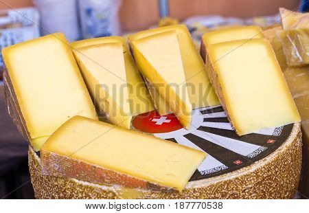 Delicious Swiss Cheese. a lot of pieces of cheese