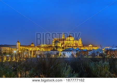 View of Mosque Cathedral of Cordoba from Roman Bridge Spain. Evening