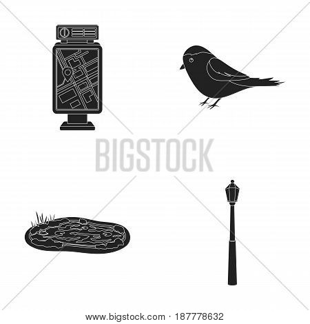 Territory plan, bird, lake, lighting pole. Park set collection icons in black style vector symbol stock illustration .