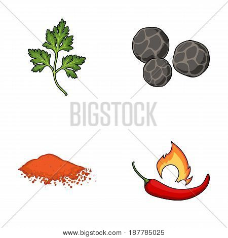 Ptrushka, black pepper, paprika, chili.Herbs and spices set collection icons in cartoon style vector symbol stock illustration flat.