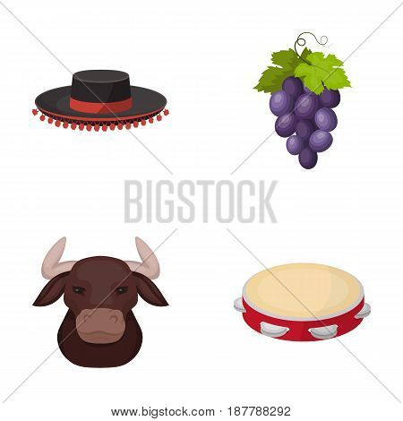 The hat of the todeador, the matador, a bunch of grapes with fists, a bull for the Spanish bullfight, a tambourine. Spain country set collection icons in cartoon style vector symbol stock illustration .