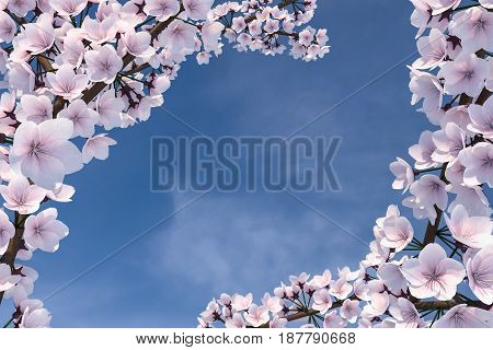 3D Illustration of a Cherry Blossom Tree as a border with blue sky background
