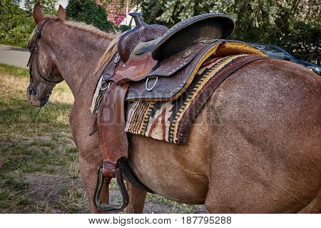 Western saddle for a horse decorated with beautiful ornament