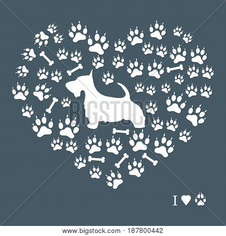 Nice Picture Of Scotch Terrier Silhouette On A Background Of Dog Tracks And Bones In The Form Of Hea