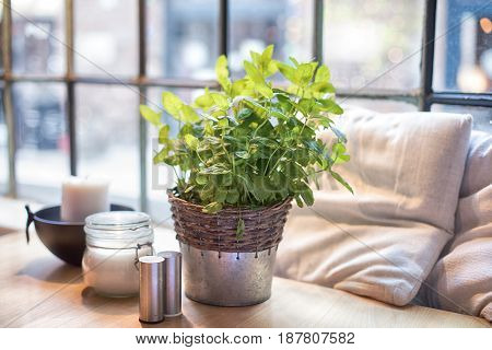 Table with fresh mint in restaurant. Window in background.