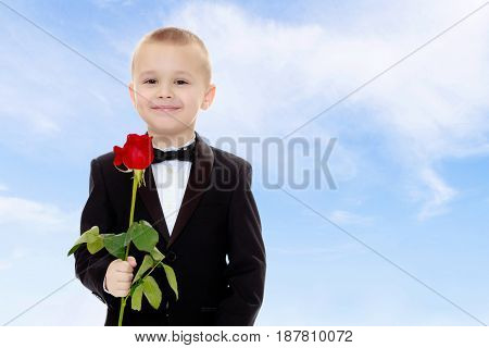 Beautiful little boy in a strict black suit , white shirt and tie.Boy holding a flower of a red rose on a long stem.On the background of summer blue sky and fluffy clouds.