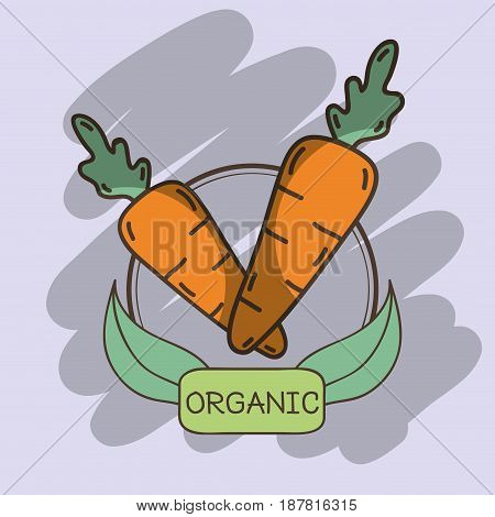 tasty fresh carrots with leaves design, vector illustration