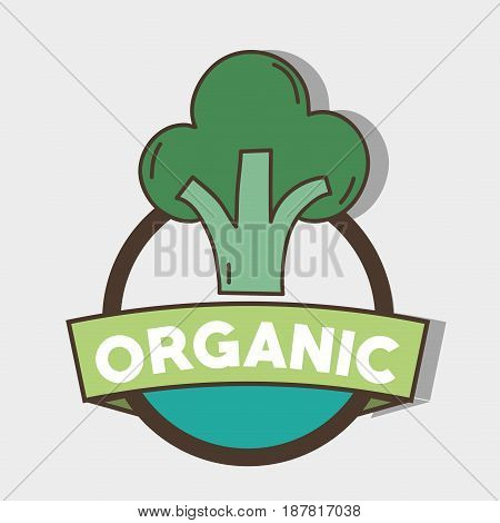 fresh broccoli organ vegetable symbol, vector illustration