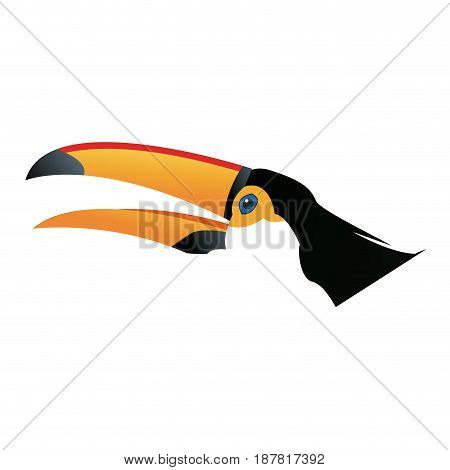 cute cartoon toucan funny cartoon tropical bird from brazil vector illustration