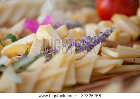 selective focus cheese buffet background