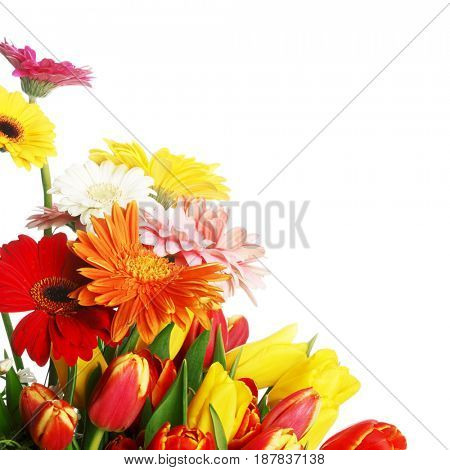Bouquet of tulips and gerberas isolated on white background