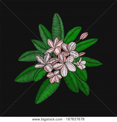 vector embroidery floral pattern with flowers embroidery Frangipani and leaves Plumeria on black background