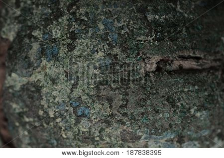 Green Patina metal texture background and copy space for add text