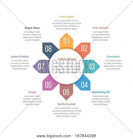 Circle infographics template with eight elements, vector eps10 illustration