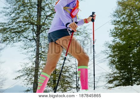 Rosa Khutor, Russia -  May 4, 2017: female running mountain snowy trail with trekking poles and compression socks in race Vertical kilometer