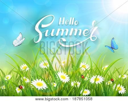 Sunny blue sky background with lettering Hello Summer. Butterflies flying above the grass and flowers, illustration.