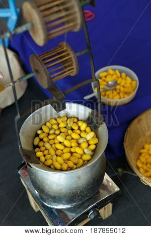 Golden Yellow Cocoon Silkworm Process To Silk Thread Textile