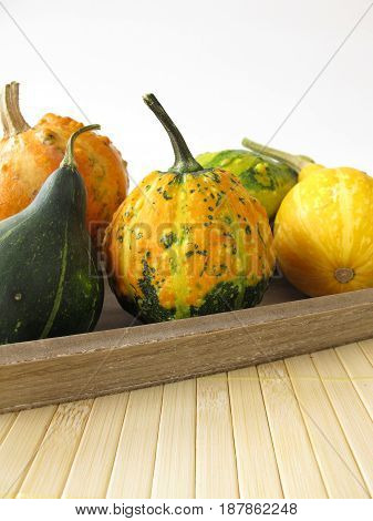 Autumnal decoration with ornamental gourds on tray