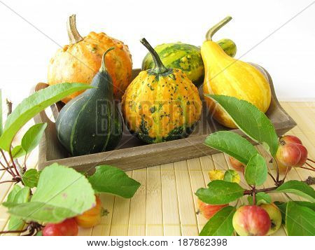 Autumnal decoration with crab apples and ornamental gourds