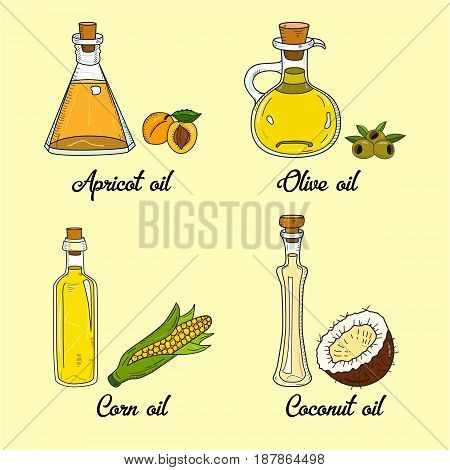 4 cooking oils in cute sketchy bottles. Hand drawn doodle set of edible vegetable food oil. With origin products olive, apricot, corn, coconut.