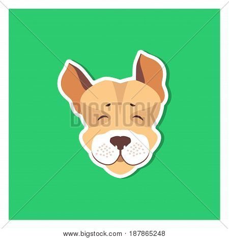 Cheerful muzzle of Jack Russell Terrier flat icon on green background. Vector illustration of movable hunting breed of dogs, small sizes. Cartoon style canine head front view flat design for web.