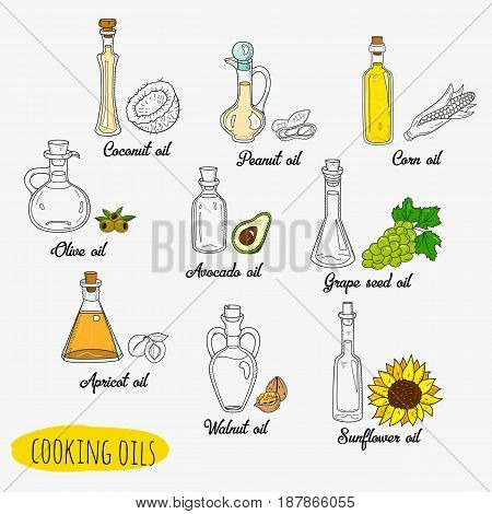 9 isolated doodle cooking oils. Mixed colored and outline set. Sketchy hand drawn vegetable oils. With origin products olive, apricot, corn, grape seed, walnut, coconut, avocado, peanut sunflower