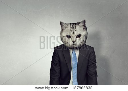 Businessman with cat head