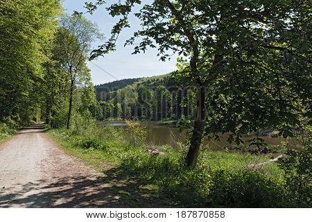 The Baerenfichtenweiher between Niederreifenberg and Schmitten in the Taunus, Germany