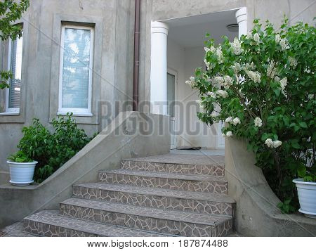 Front Door of a Beautiful Town House with vegetation
