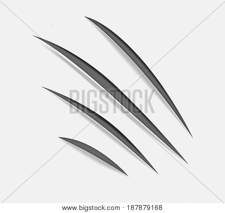 Realistic claw scratches on background. Vector illustration.