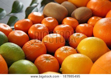 Beautiful composition of citrus fruits and kiwi, closeup