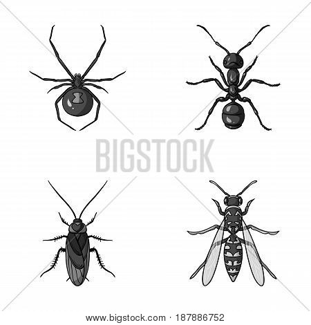Spider, ant, wasp, bee .Insects set collection icons in monochrome style vector symbol stock illustration .