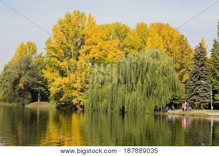 Golden autumn in the city Park, the trees bent over the water of the pond