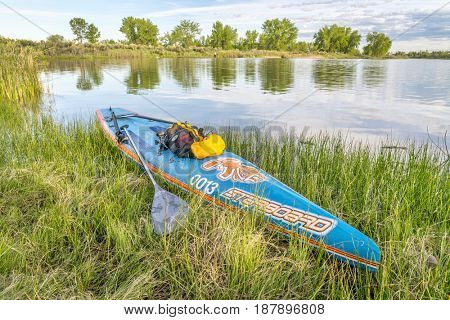 FORT COLLINS, CO, USA - MAY 23, 2017: Racing stand up padleboard by Starboard with paddles, leash, and GPS  on a grassy lake shore