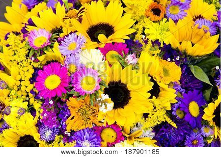 The background of the many beautiful flowers of different colors