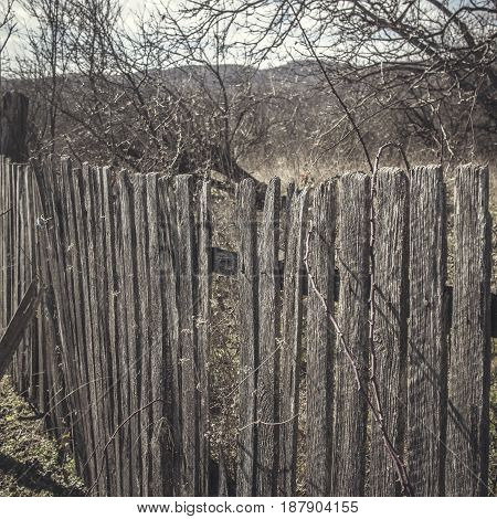 old wooden fence with rusty nails close up